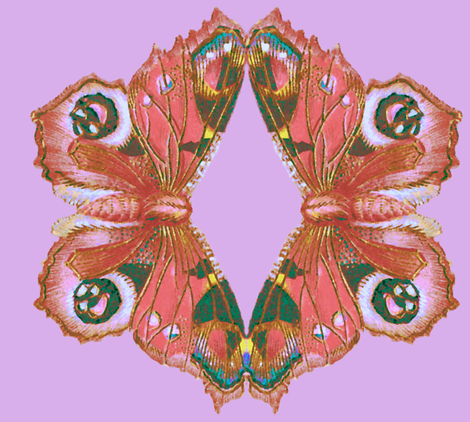 Butterfly Cut  fabric by peacoquettedesigns on Spoonflower - custom fabric