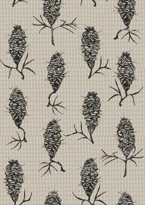 Banksia on grey