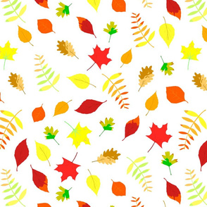 falling_autumn_leaves_crisp_white