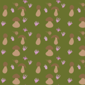 Forest_floor
