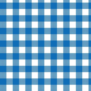 Gingham Check - Blue