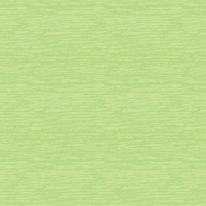 Textured Light Green Solid