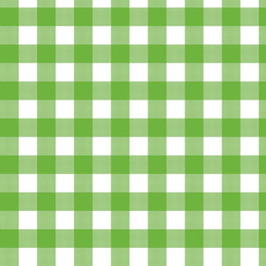 Gingham Check Green