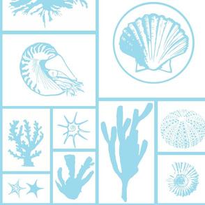 White_sea_creatures