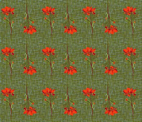indian paintbrush borders fabric by weavingmajor on Spoonflower - custom fabric