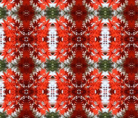 Red Maple Leaves 3494 fabric by falcon11 on Spoonflower - custom fabric