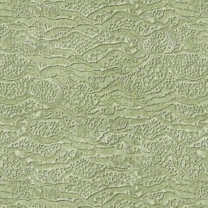 encrusted sage green