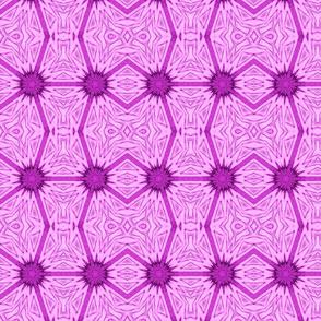 Dhima Purple
