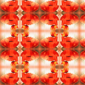 poppies red gold-mirror