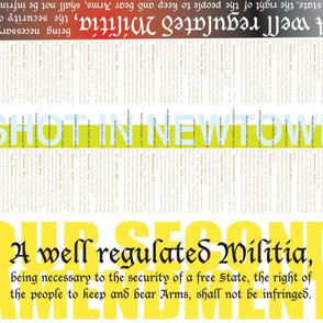 militia-historysm