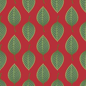 mulberry_leaf