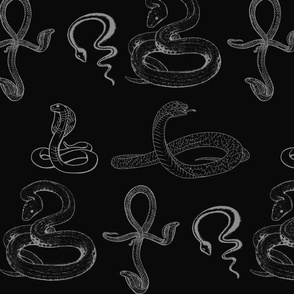 Snake Year 2013 -- black water serpent