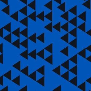 graphic_navy_bk