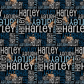 Personalised Name Fabric - Monkeys in Black and Blue