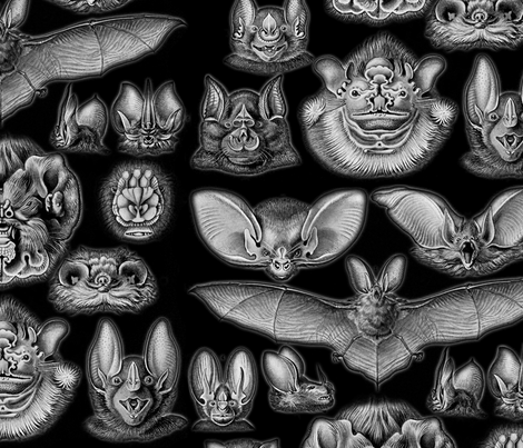 Vintage Bats Pattern fabric by ophelia on Spoonflower - custom fabric