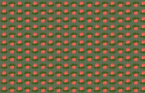 Rrhododendron_catawbiense_coral_and_green_on_cream_shop_preview