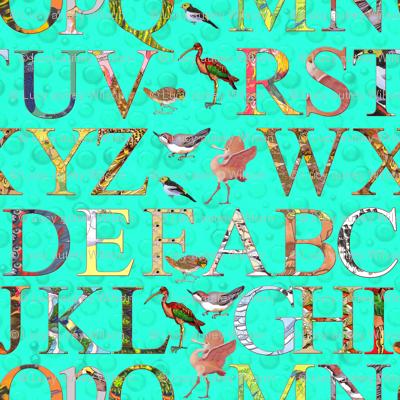 Bird Alphabet