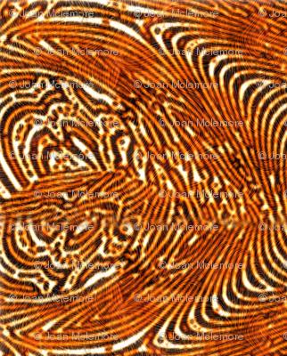 Tiger Skin Rug