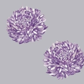 Purple Poms on Grey