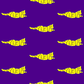 Purple_Yellow_Haite_kitty_large
