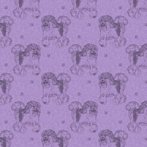 Trotting Lowchen stamps - purple