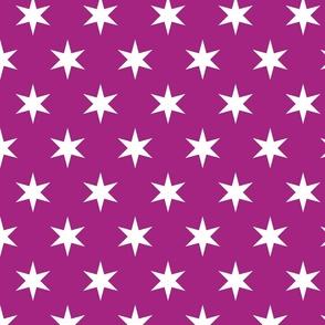 HGTV Magazine 6 Point Star in Purple
