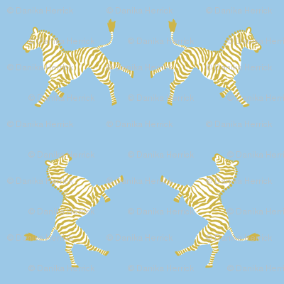 Zebra Hi 5 Blue and Gold