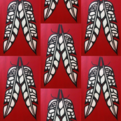 Heiltsuk eagle and raven feathers