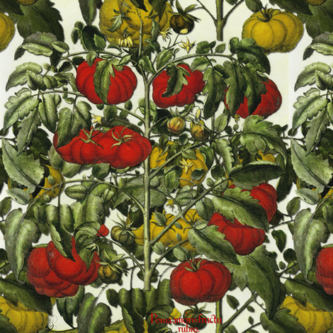 Tomato Heirloom fabric by peacoquettedesigns on Spoonflower - custom fabric