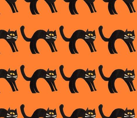 Catblack2_shop_preview