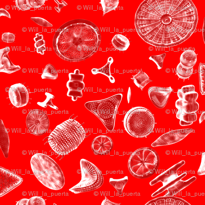 Diatoms Red