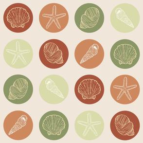 Shells Warm Colors