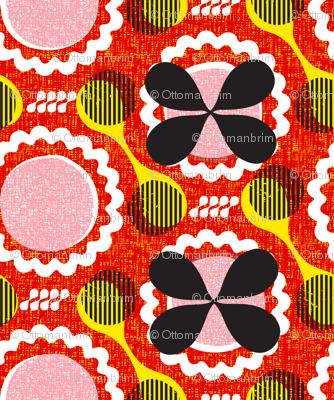kwaai-African