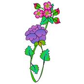 Single_FLOWER_2_darker_lines_tall_600