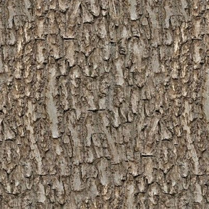 Natural Tree Bark