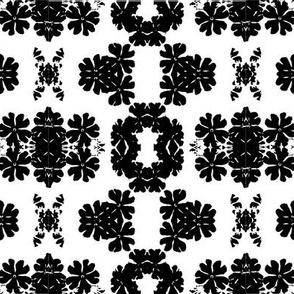 Black and White Primula_Design