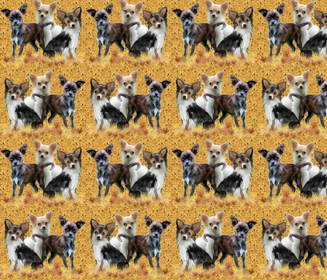 Chihuahua_grouping fabric by dogdaze_ on Spoonflower - custom fabric