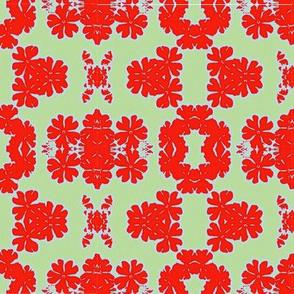 Bold Primula_Design