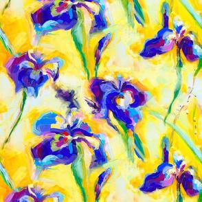 Blue Iris on yellow background