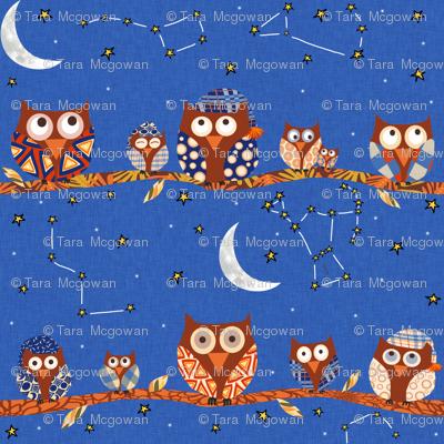 Stargazing Night Owls