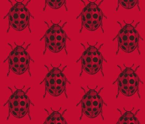 Rrrrrrrrresized_lady_bug_v3_shop_preview