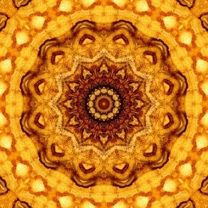 K01-_leaf_impressions_square_bold