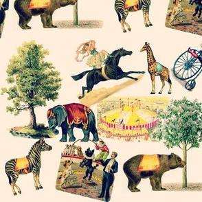 Circus Toile
