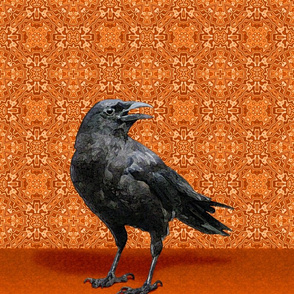 Black Crow, Rusty Orange Kaleidoscope Pattern A