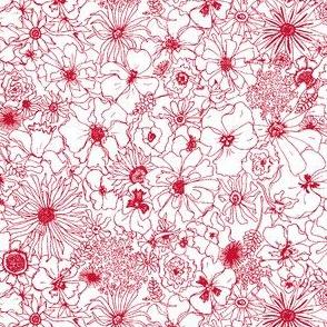 Red Flowers Sketch