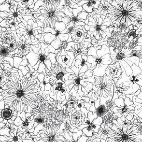 Gray Garden Sketch