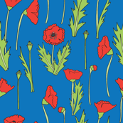 where the poppies grow