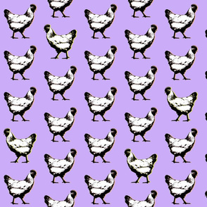 pop art chickens : purple