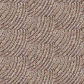 Look Closely! Tree Rings--Brown