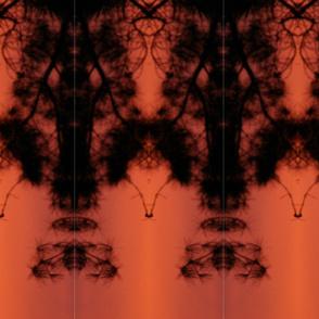 Sunset Lace